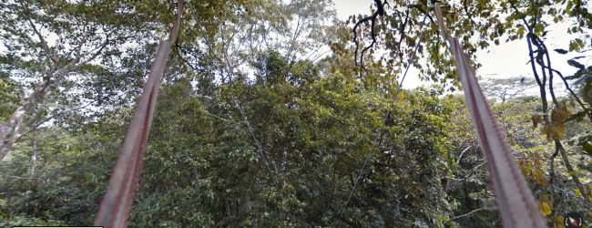 Google Street View extended to the Amazon rainforest
