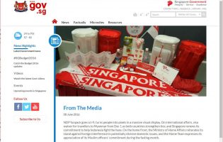 Puzzling to cut Internet access from public servants in Singapore