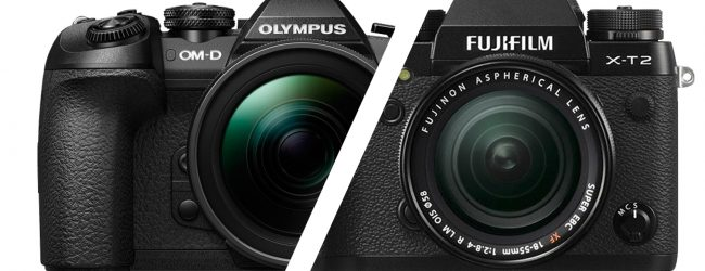 Mirrorless camera shootout: Olympus OM-D E-M1 Mark II versus