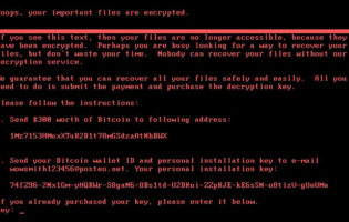 Impact of cyber attacks escalates with latest Petya ransomware