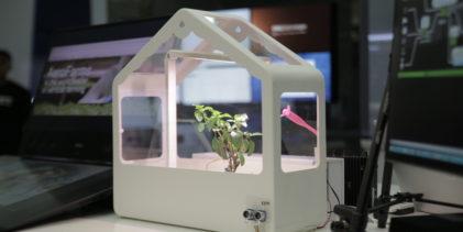 AI Singapore builds up on-premise setup for compute-heavy tasks