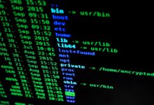 As ransomware evolves, businesses need new tools to fight back